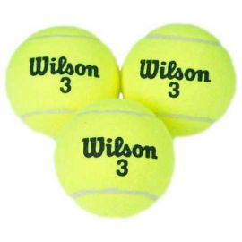 Wilson Champ XD Tennis Ball  (Pack of 3, Yellow)
