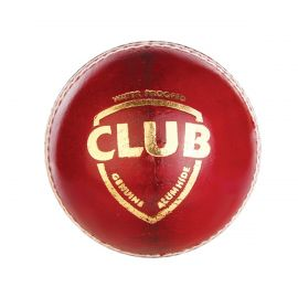 SG Club Leather Cricket Ball